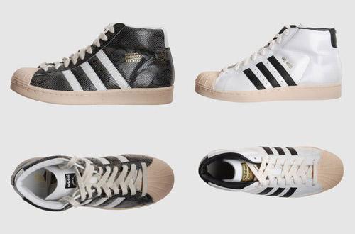 Adidas Pro-model
