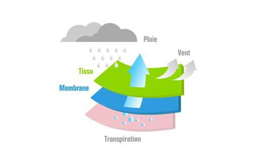picture-membrane
