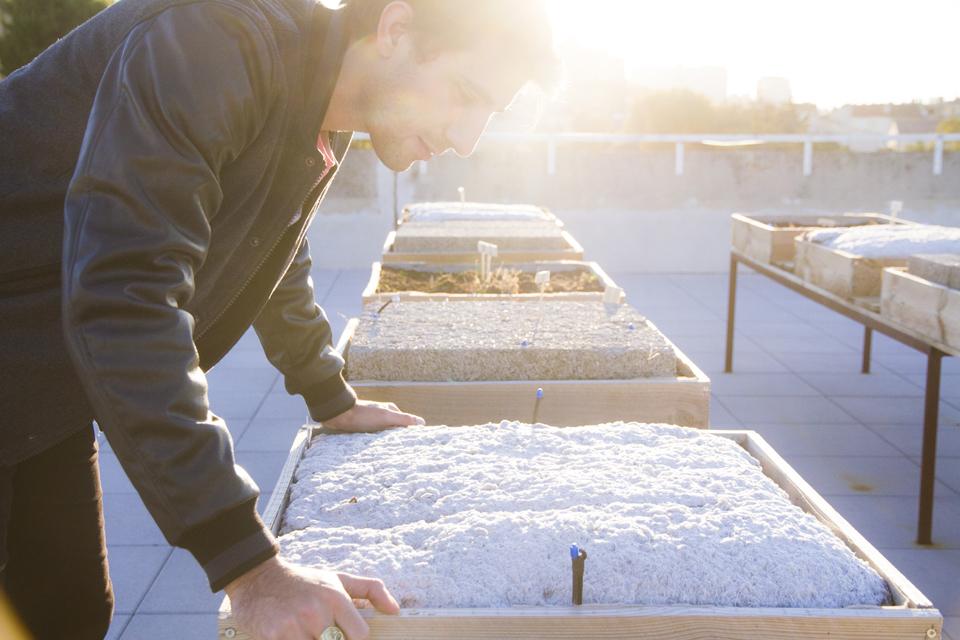 sur le toit 16