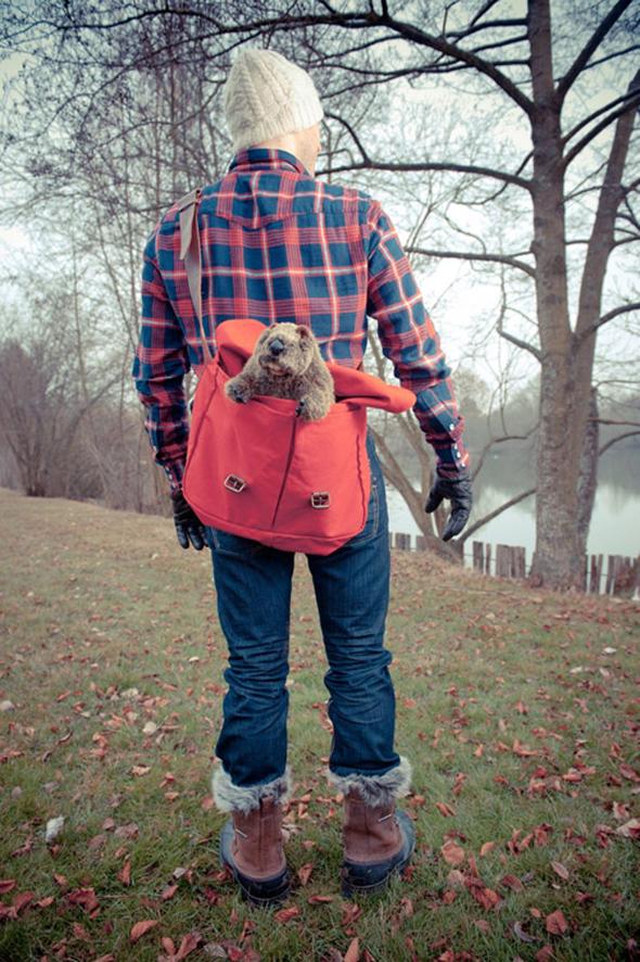 trappeur marmotte bonnet