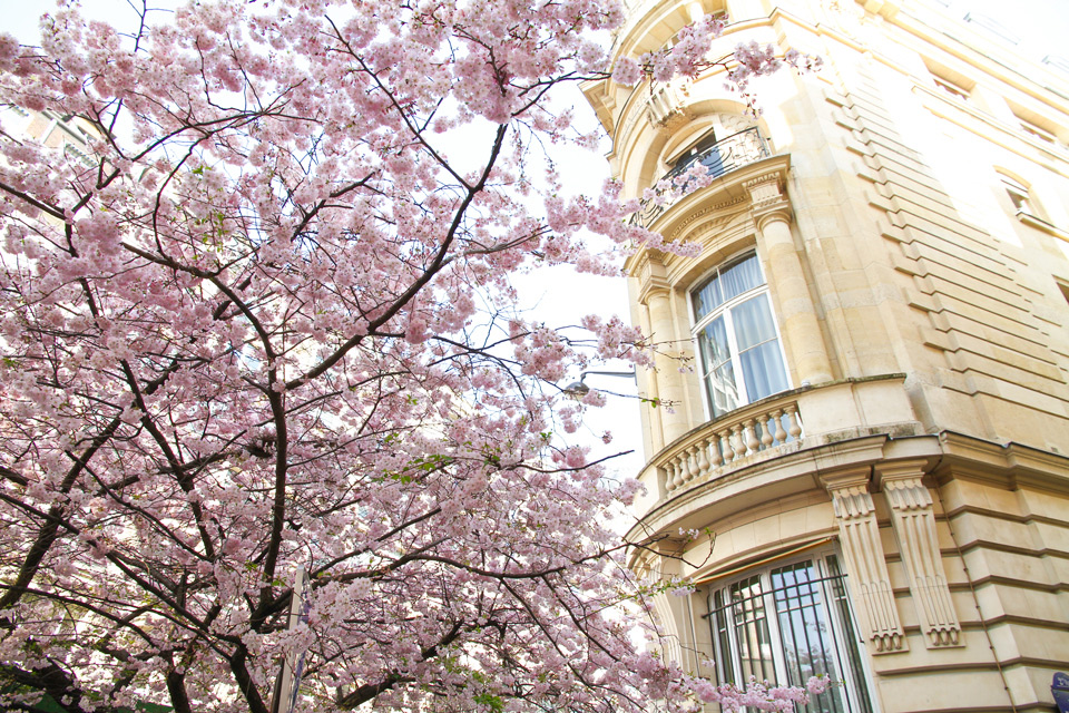 Paris rue Argout