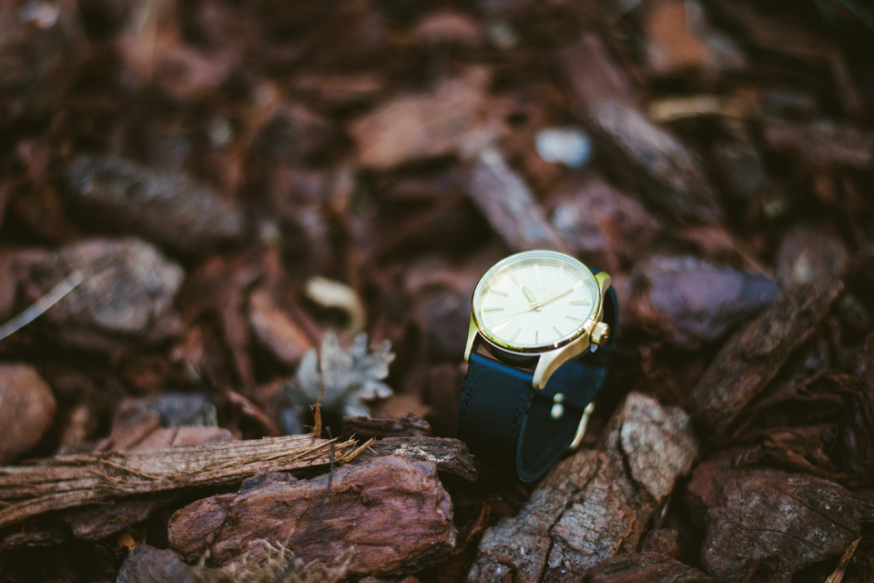 montre nixon sentry gold