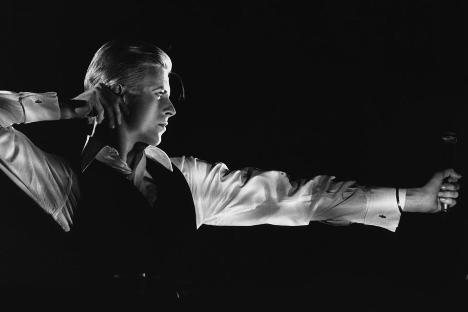 David Bowie Thin White Duck