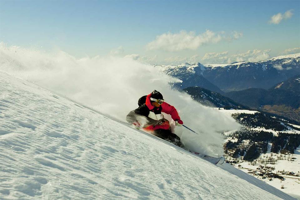 candide thovex ski homme