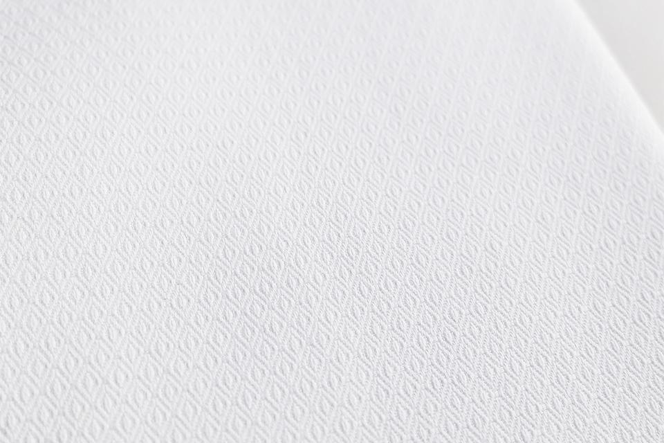 tissu chemise hast 2