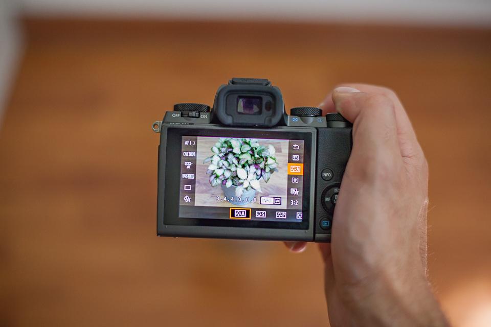 test appareil photo canon eos m5