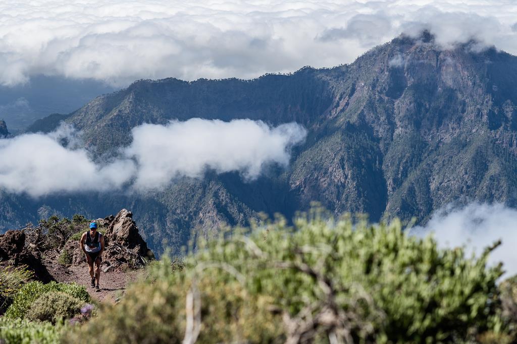 salomon marche montagne