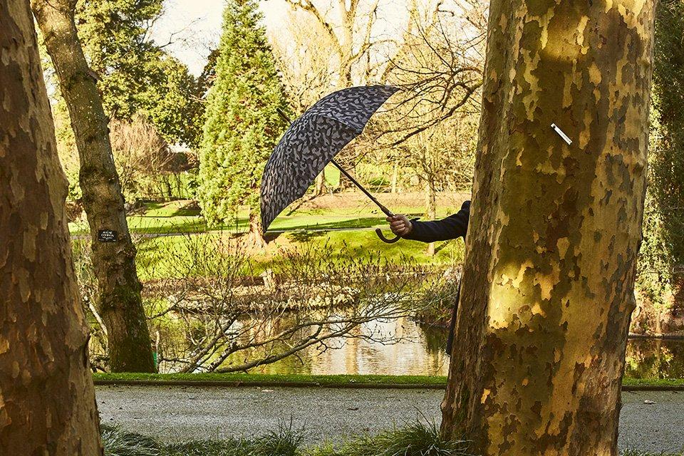 Look Jardin Parapluie Arbre