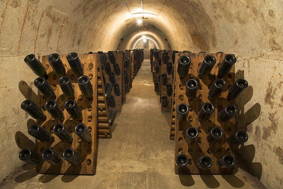 Mumm champagne vineyards