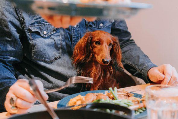 La Cuisine Walter