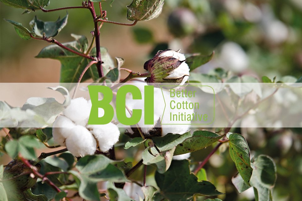 Better Cotton Initiative Greenwashing