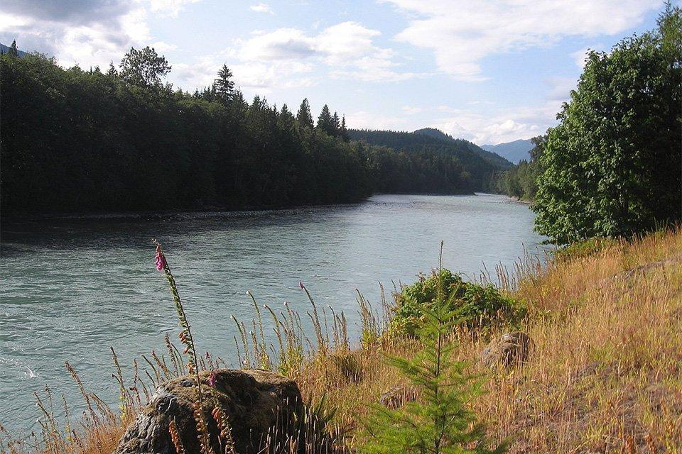 Sauk river filson