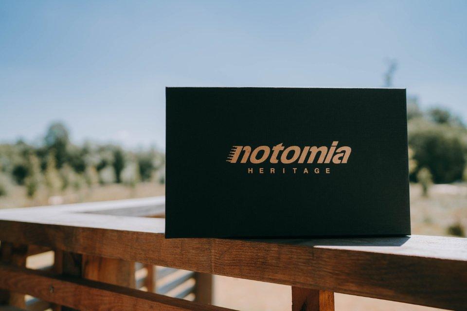 Notomia Aquila Boite