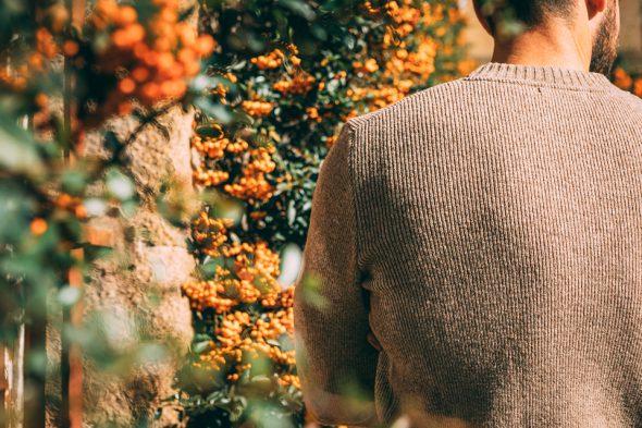 pull laine ludo le slip français test avis dos