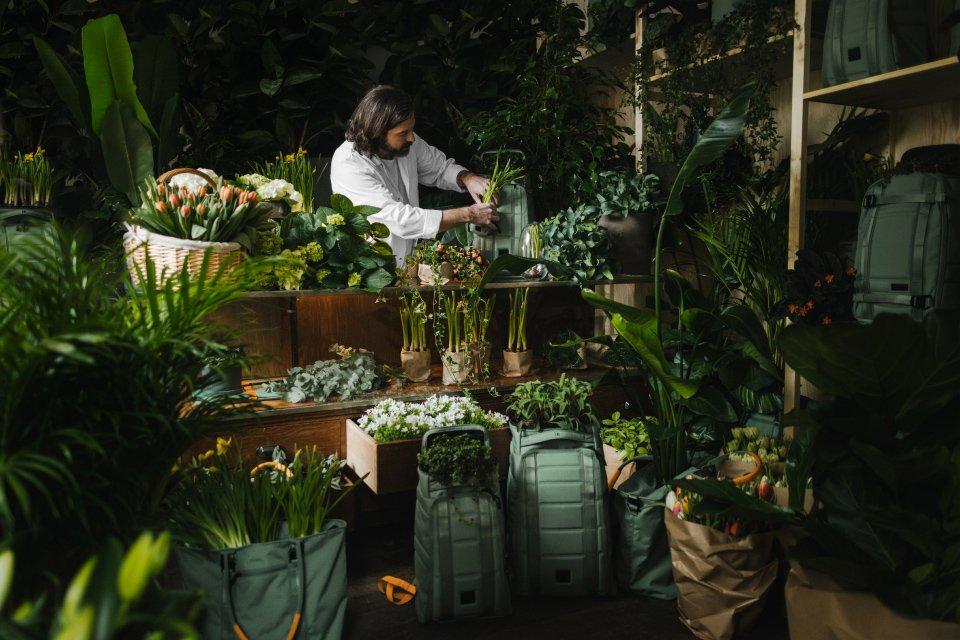 dbjourney sac green garden