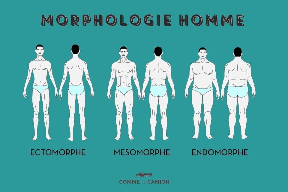 morphologie homme conseils